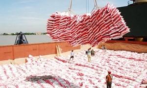 Việt Nam trúng thầu 1 triệu tấn gạo bán cho Indonesia