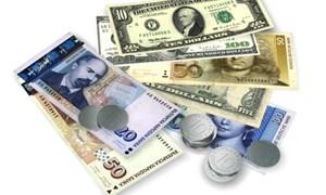 Kho bạc Nhà nước thông báo tỷ giá hạch toán ngoại tệ tháng 11/2015