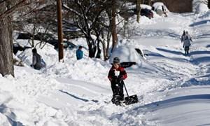 """Mỹ """"mất trắng"""" hàng tỷ USD do bão tuyết"""