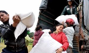 Trên 700 tấn gạo cứu đói khẩn cấp cho người dân vùng biển Quảng Trị