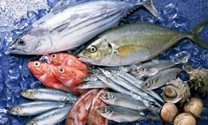 Điều tra vụ chứng nhận trái phép sản phẩm thủy sản