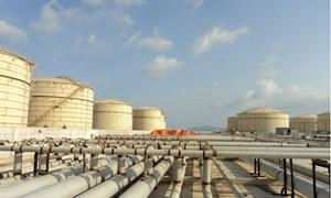 Kết nối trực tiếp dữ liệu kho xăng dầu giữa hải quan - doanh nghiệp