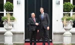 Đưa quan hệ Việt Nam - Hà Lan đi vào chiều sâu và phát triển bền vững