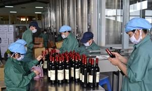 Rượu sản xuất phải dán tem và ghi nhãn hàng hóa