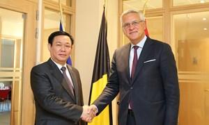 Hợp tác kinh tế là trụ cột của quan hệ Việt Nam - Bỉ