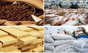 Xuất khẩu nông sản sang Hoa Kỳ: Quan trọng là minh bạch thông tin