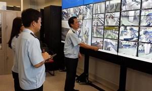Thành lập Tổ hỗ trợ triển khai đề án giám sát hàng hóa tại cảng biển, hàng không