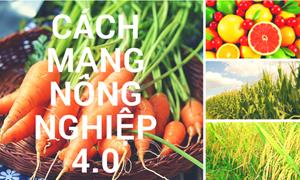 Nông nghiệp 4.0 là cú huých cho tái cơ cấu ngành