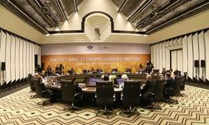 Khai mạc Hội nghị các nhà lãnh đạo kinh tế APEC lần thứ 25