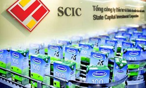 Thoái vốn tại Vinamilk: Điều gì làm nên thành công của SCIC?