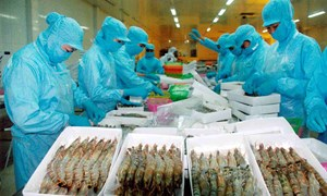 Xuất khẩu nông - lâm - thủy sản lập kỷ lục mới