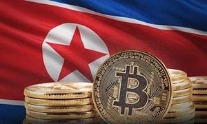Triều Tiên có thể