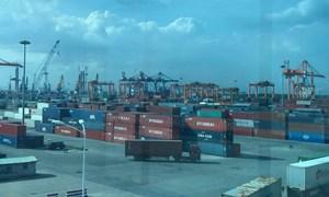 Hệ thống hải quan tự động tại cảng biển: Giảm 253 giờ công lao động/ngày
