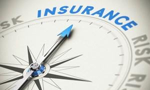 Thị trường bảo hiểm Việt Nam: Đánh dấu một năm khởi sắc