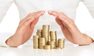 Tổ chức bảo hiểm tiền gửi và vai trò trong tái cơ cấu tổ chức tín dụng