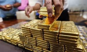 Giá vàng cao nhất 1 năm qua, dự báo tiếp tục tăng