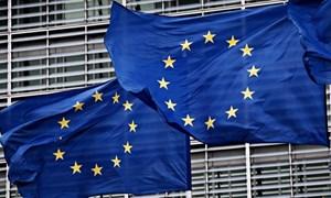 Khu vực đồng Euro đạt mức tăng trưởng kinh tế cao nhất trong thập kỷ