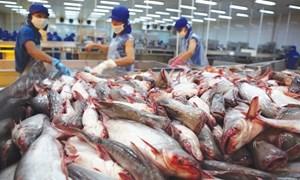 Thủ tướng Chính phủ chỉ đạo rà soát hàng hóa Việt xuất khẩu sang Hoa Kỳ