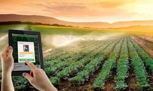 Nông nghiệp 4.0 và giải pháp để không tụt hậu