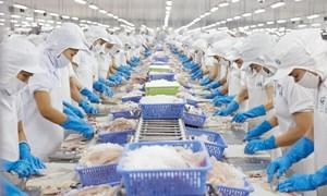 """Doanh nghiệp xuất khẩu thủy sản thấm thía """"thẻ vàng"""" EU"""