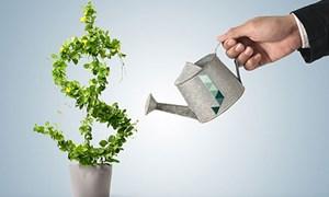 Kỳ vọng gia tăng đầu tư ra nước ngoài