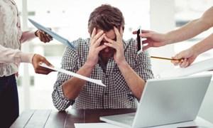 Stress công sở gây thiệt hại kinh tế bao nhiêu?