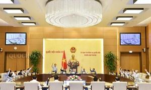 Ủy ban Thường vụ Quốc hội nhất trí để Tổng cục Thuế dùng kinh phí hoạt động thực hiện tinh giản biên chế