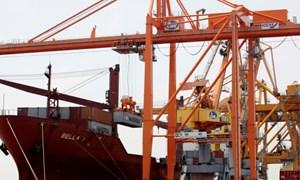 Việt Nam có nguy cơ thiệt hại nặng nề nhất Đông Nam Á trong cuộc chiến thương mại Mỹ - Trung?
