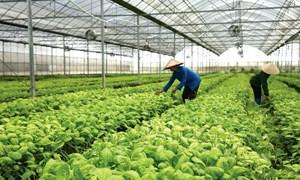 Thúc đẩy hợp tác PPP mở đường cho nông sản Việt