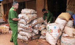Nông sản Trung Quốc gắn mác nông sản Việt Nam, người Việt lãnh đủ