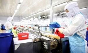Phát triển kinh tế tư nhân để tạo nguồn lực tăng trưởng