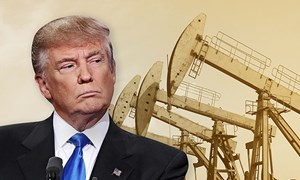 Ông Donald Trump và canh bạc giá dầu với OPEC
