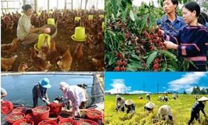 Bức tranh nông nghiệp khả quan với nhiều lĩnh vực vượt chỉ tiêu