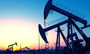 OPEC lại hạ dự báo tăng trưởng tiêu thụ dầu