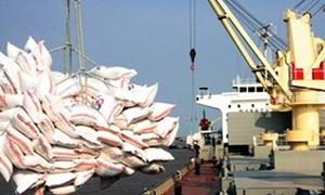 Gạo Việt Nam tăng giá nhờ đơn hàng từ Indonesia