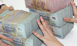 Lựa chọn mô hình xử lý nợ xấu ở Việt Nam