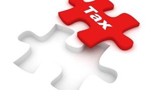 Những điểm mới của chính sách thuế xuất, nhập khẩu năm 2013