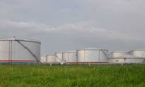 Đề xuất cho các doanh nghiệp làm đầu mối tạm nhập tái xuất xăng dầu vào khu chế xuất