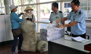 Hải quan Móng Cái: Đấu tranh chống buôn lậu, vận chuyển trái phép hàng hóa qua biên giới
