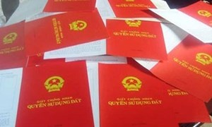 Giám đốc Bằng An dùng sổ đỏ giả lừa đảo 40 tỷ đồng