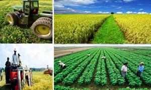 Huy động nguồn lực từ các doanh nghiệp đầu tư cho xây dựng nông thôn mới