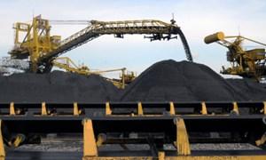 Chỉ doanh nghiệp mới được kinh doanh, xuất khẩu than