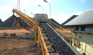 Thủ tục xuất nhập khẩu quặng sắt theo loại hình kinh doanh tạm nhập tái xuất