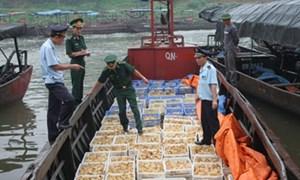 Cần giải pháp đồng bộ để chặn buôn lậu từ cửa khẩu