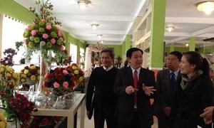 Trưởng Ban Kinh tế Trung ương Vương Đình Huệ khảo sát doanh nghiệp nông nghiệp tại Lâm Đồng