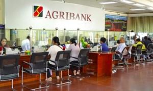 """Agribank đẩy mạnh nguồn vốn cho phát triển sản xuất kinh doanh, chung tay đẩy lùi tín dụng """"đen"""""""