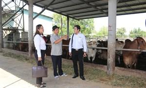 Agribank thúc đẩy hoạt động tài chính vi mô ở Việt Nam