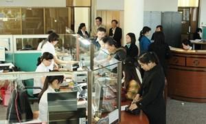 Kho bạc Nhà nước Đà Nẵng cải cách thủ tục hành chính, nâng cao chất lượng phục vụ khách hàng