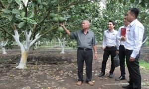 Tạo nguồn sinh khí cho phát triển nông nghiệp và nông thôn