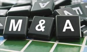 Xu thế mua bán, sáp nhập doanh nghiệp ở Việt Nam trong trạng thái bình thường mới